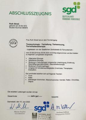 Certificato Psicologia animali